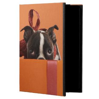 Boston terrier puppy in gift box iPad air case