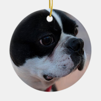 Boston terrier round ceramic decoration