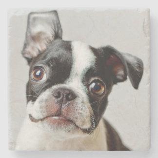 Boston Terrier Stone Coaster