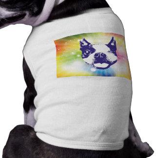 Boston Terrier - Sunburst Shirt