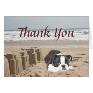 Boston Terrier Thank You Card Sandcastles