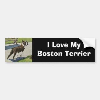 Boston Terrier Vintage Bumper Sticker