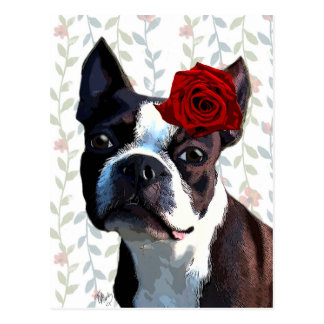 Boston Terrier with Rose on Head 2 Postcard
