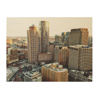 Boston view wood print