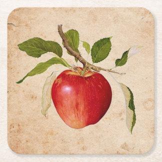Botanical Apple Drink Coasters (Set of 6)