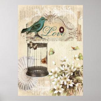 botanical art birdcage modern vintage french bird poster