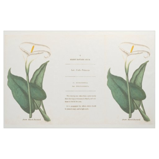 Botanical Calla Lilies Flowers Floral Fabric