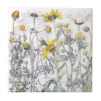Botanical Chrysanthemum Wildflower Flowers Tile