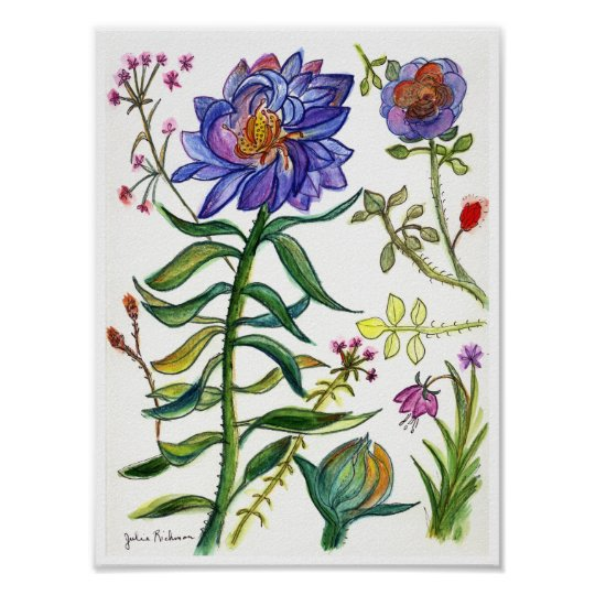 Botanical Drawing of Wonderful Blue Flower Poster