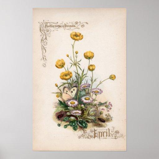 Botanical Engravings, April Poster