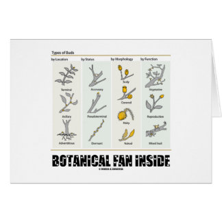 Botanical Fan Inside (Types Of Buds) Greeting Card