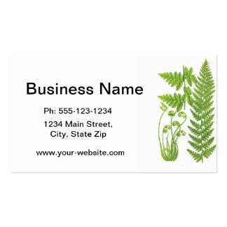 Botanical Fern Illustration No.7 Tropical Decor Pack Of Standard Business Cards