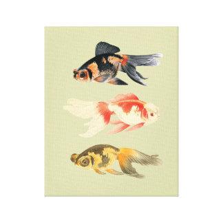Botanical Fish Trio Canvas Print