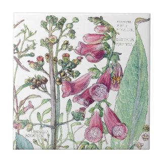 Botanical Foxglove Wildflower Flowers Tile