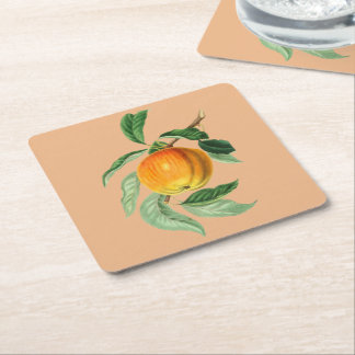 Botanical Fruit Peach Square Paper Coaster