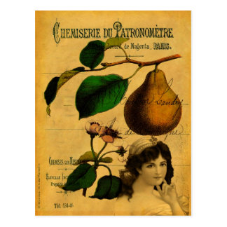 Botanical Fruit Postcard