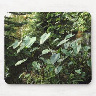 Botanical Garden Mousepad