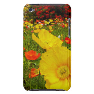 Botanical gardens at Queens Park iPod Touch Case