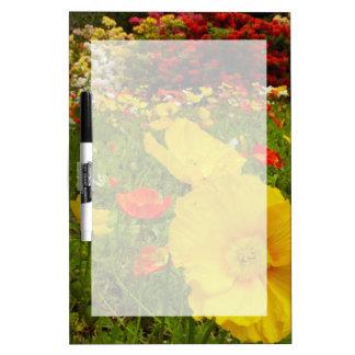 Botanical gardens at Queens Park Dry Erase Board