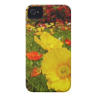 Botanical gardens at Queens Park iPhone 4 Cover