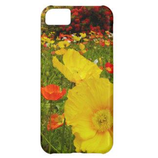 Botanical gardens at Queens Park iPhone 5C Case