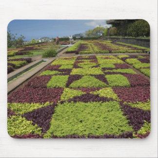 Botanical Gardens, Funchal, Madeira Islands, Mouse Pad