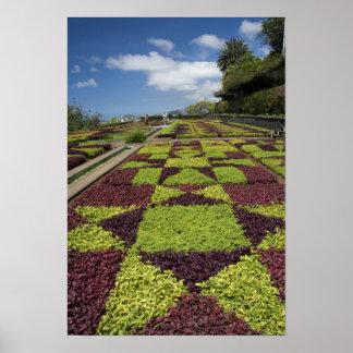 Botanical Gardens, Funchal, Madeira Islands, Poster