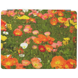 Botanical gardens iPad cover