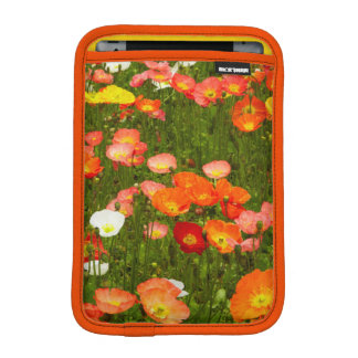 Botanical gardens iPad mini sleeve