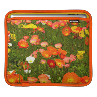 Botanical gardens iPad sleeve