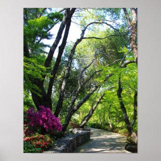 Botanical Gardens, Path, Maple Trees Poster