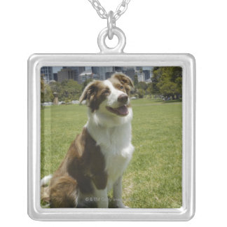Botanical Gardens, Sydney, New South Wales, 3 Silver Plated Necklace