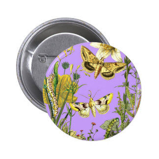 Botanical Illustration Floral with Butterfly Pins