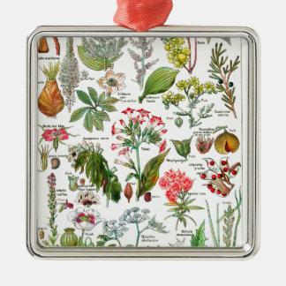 Botanical Illustrations Christmas Ornament