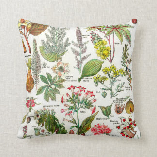 Botanical Illustrations Cushion