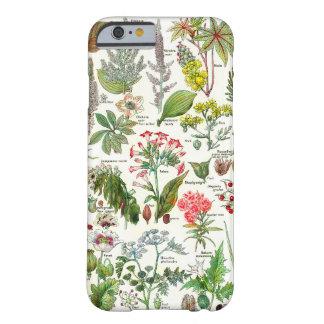 Botanical Illustrations-Larousse Plants dangereus Barely There iPhone 6 Case
