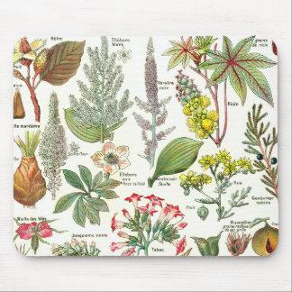 Botanical Illustrations - Larousse Plants Mouse Mat
