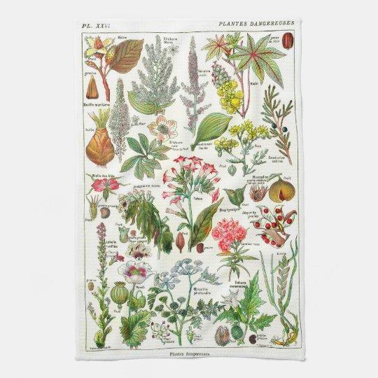 Botanical Illustrations - Larousse Plants Tea Towel