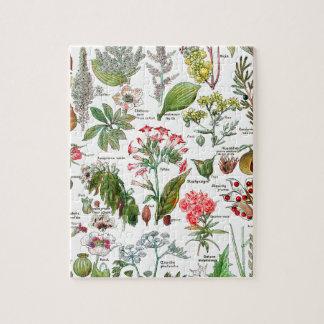 Botanical Illustrations Puzzle