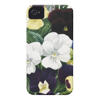 BOTANICAL iPhone 4/4S case Pansies
