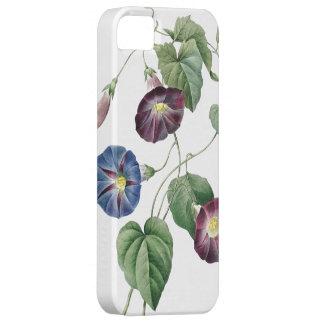 BOTANICAL iPhone 5 case Morning Glory