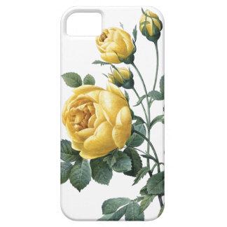 BOTANICAL iPhone 5 case Yellow Roses
