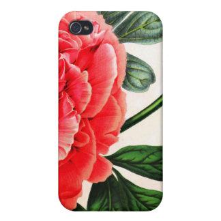 Botanical  iPhone 4 cases