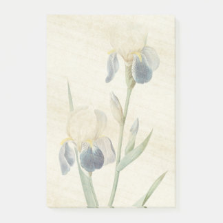 Botanical Iris Flower Redoute Post It Notes