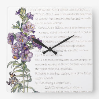 Botanical Jacobs Ladder Family Flowers Wall Clock