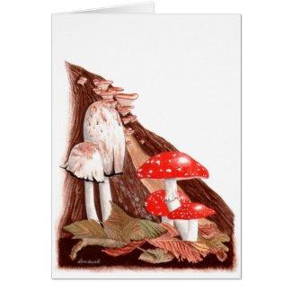 Botanical Painting: Autumn Toadstools Card
