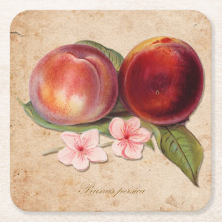 Botanical Peach Drink Coasters (Set of 6)