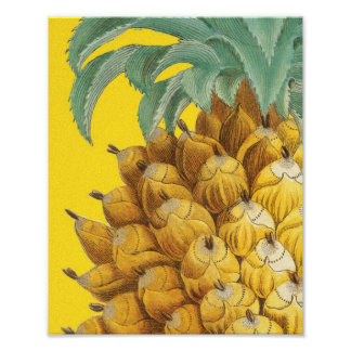 Botanical Pineapple in Yellow Posters