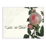 Botanical Pink Rose, Lilac Save the Date Postcard