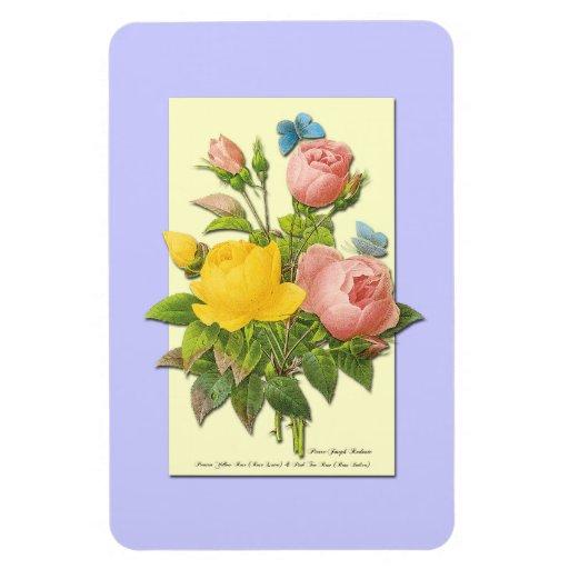 Botanical Pink Yellow Roses Rectangular Magnet